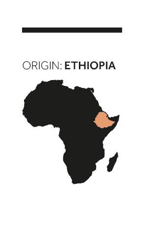 ethiopia_ok